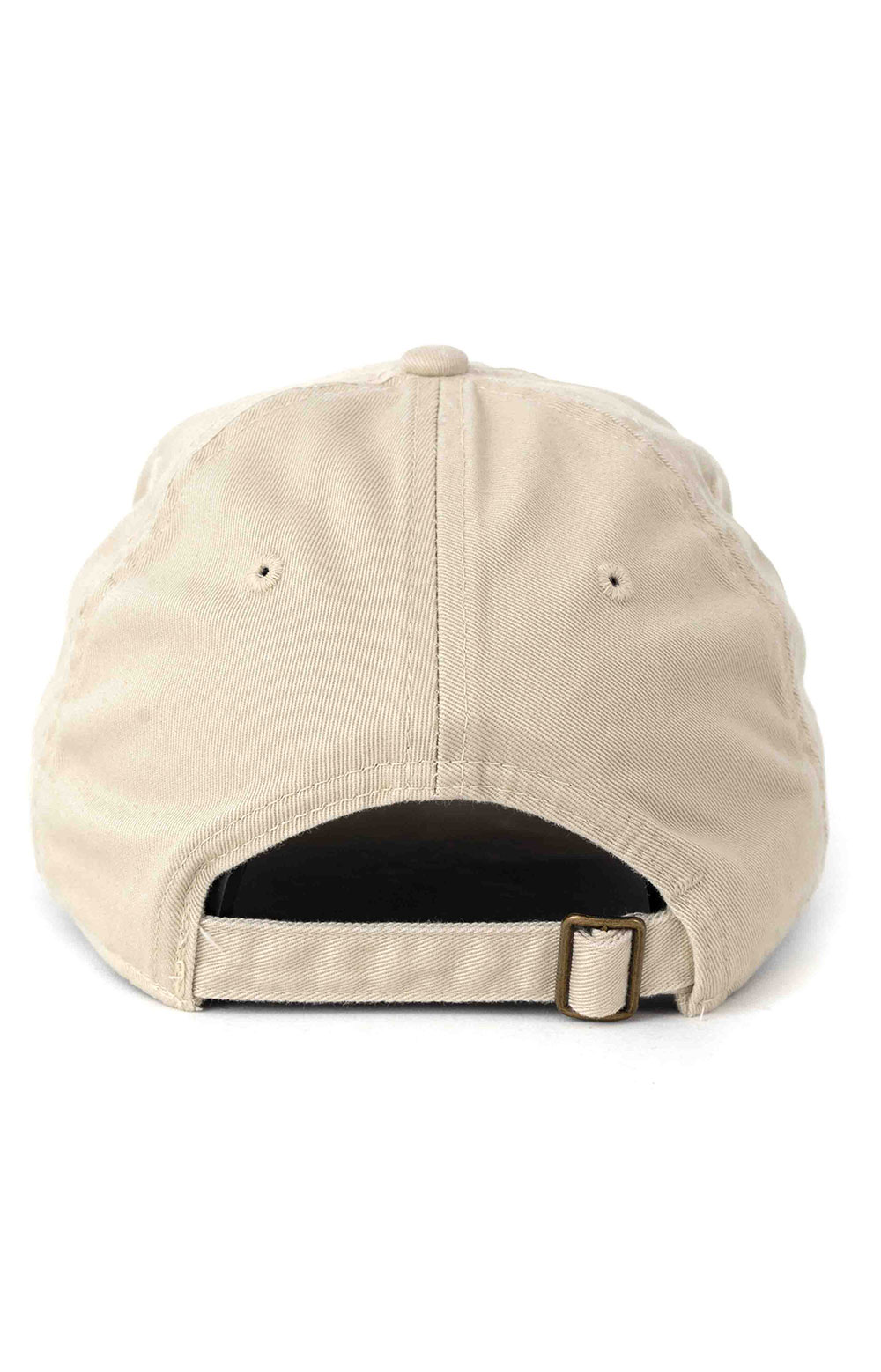 Follow Your Heart Dad Hat - Oyster  3