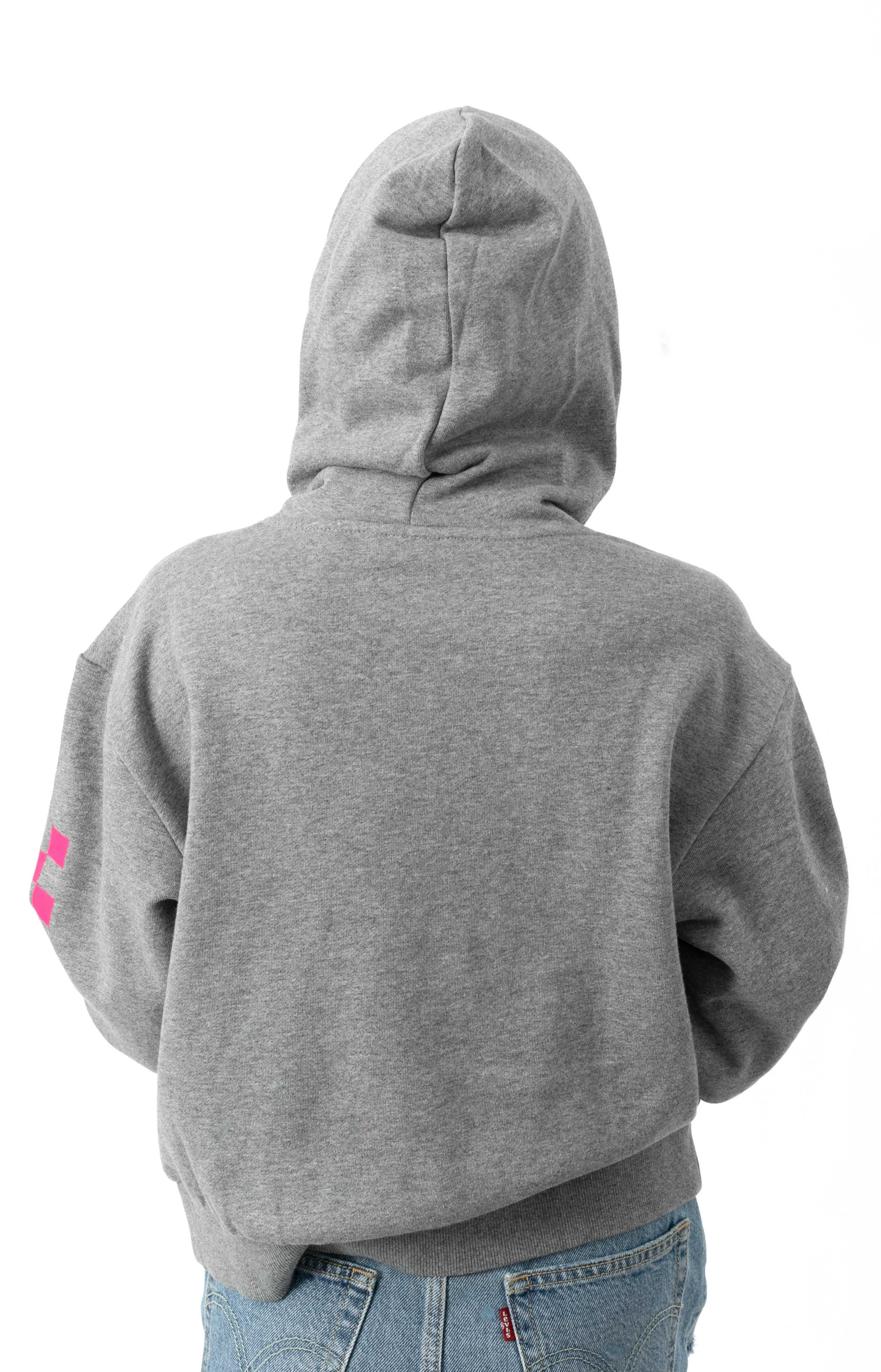 World Check Pullover Hoodie - Grey Heather  3