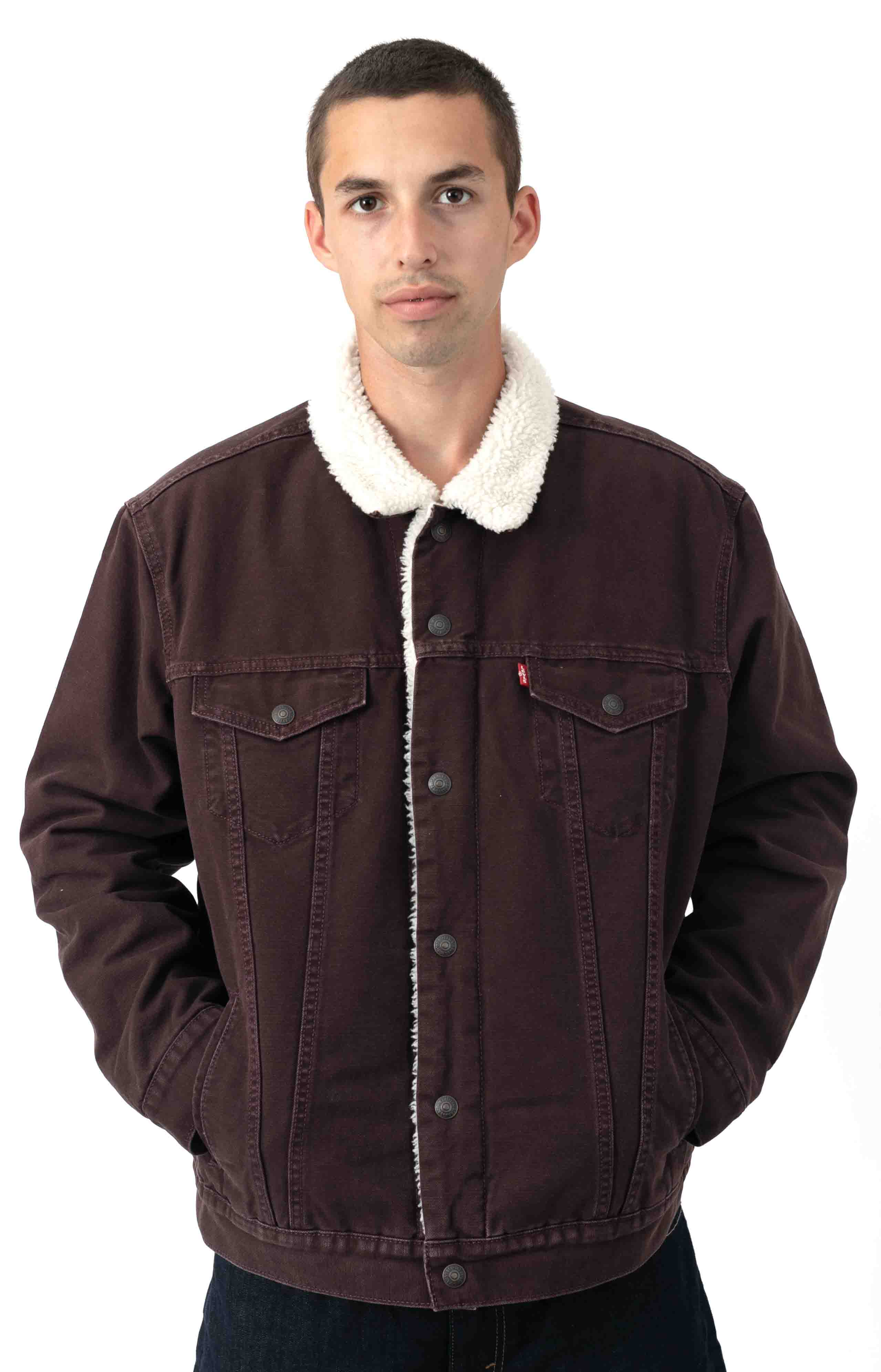 Type 3 Sherpa Trucker Jacket - Bayberry Canvas