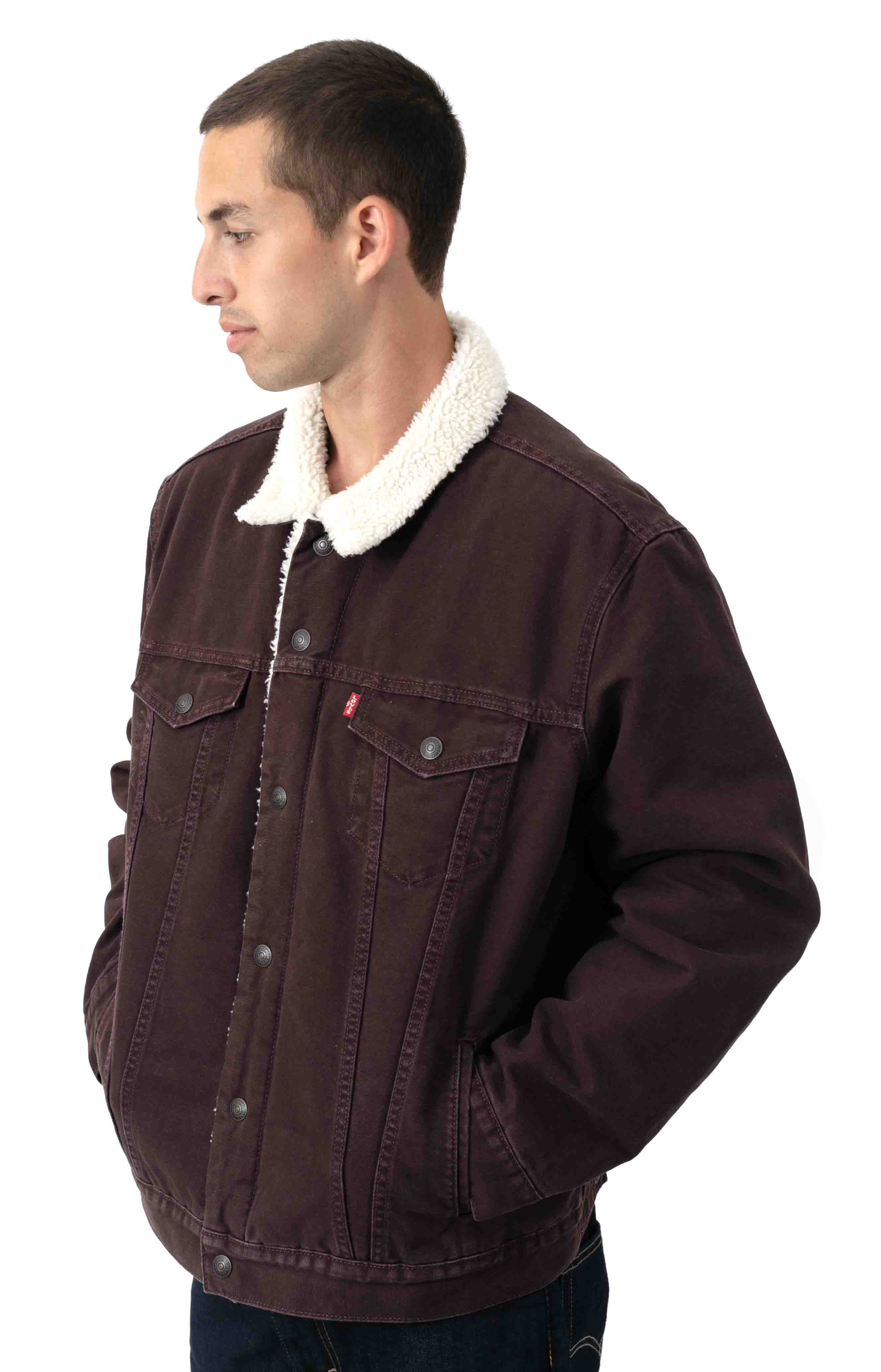 Type 3 Sherpa Trucker Jacket - Bayberry Canvas  2