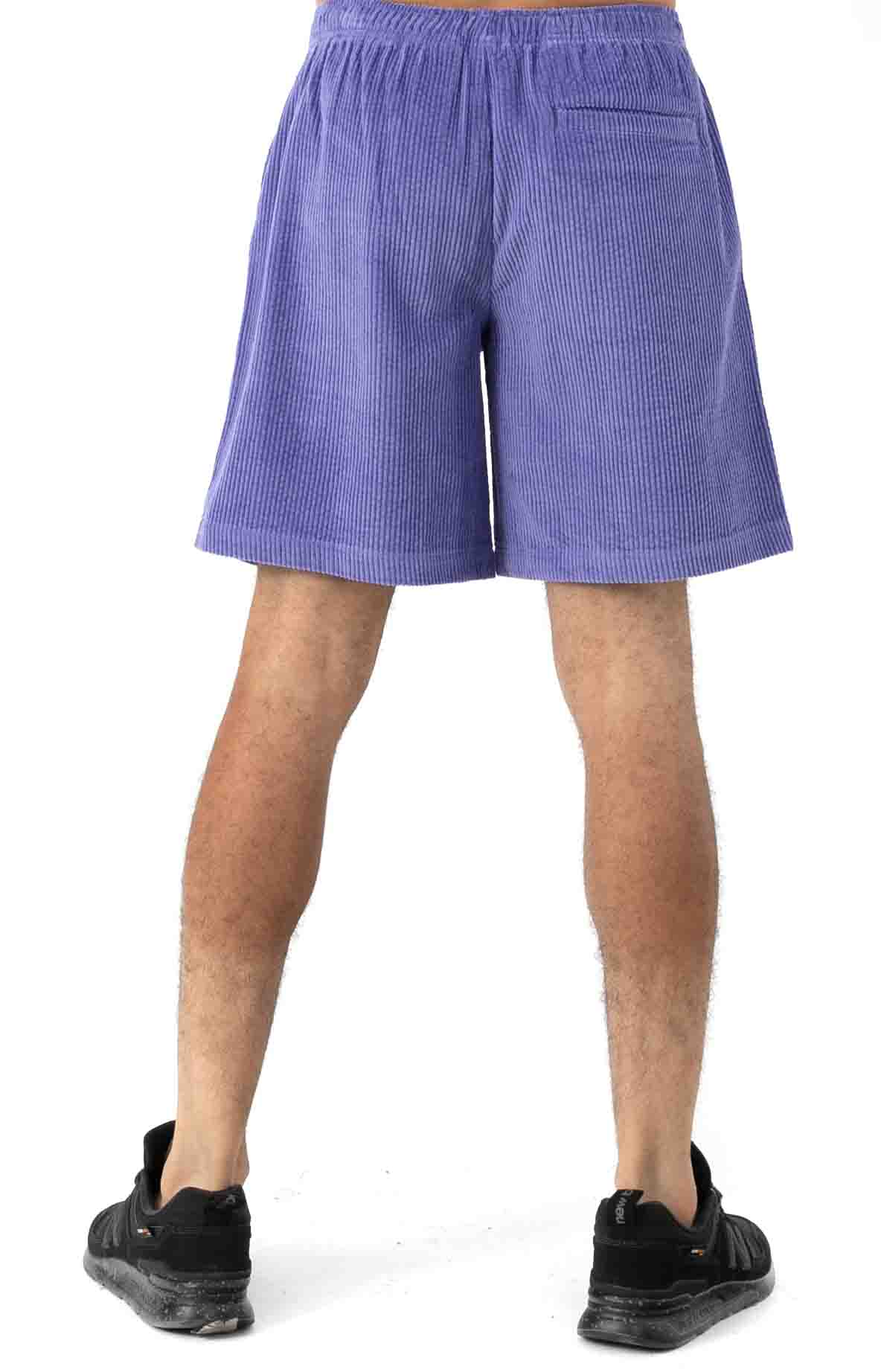 Wide Wale Corduroy Chill Shorts - Periwinkle  3