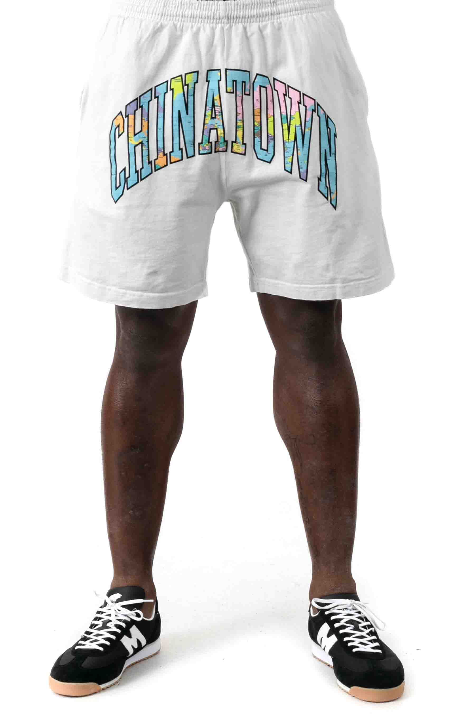 Globe Arc 2.0 Sweatshorts - White