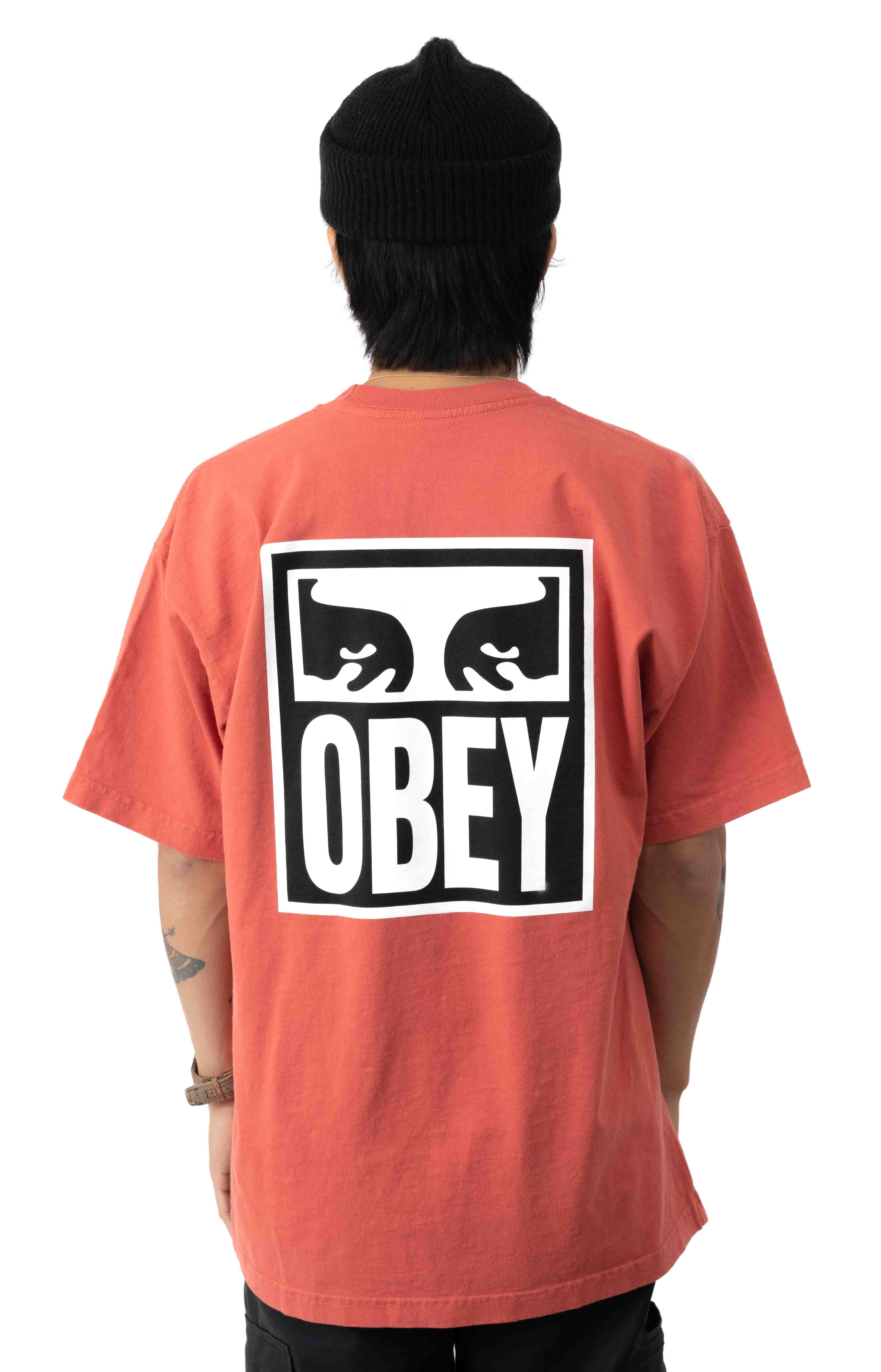 Eyes Icon 2 Heavyweight T-Shirt - Chili 3