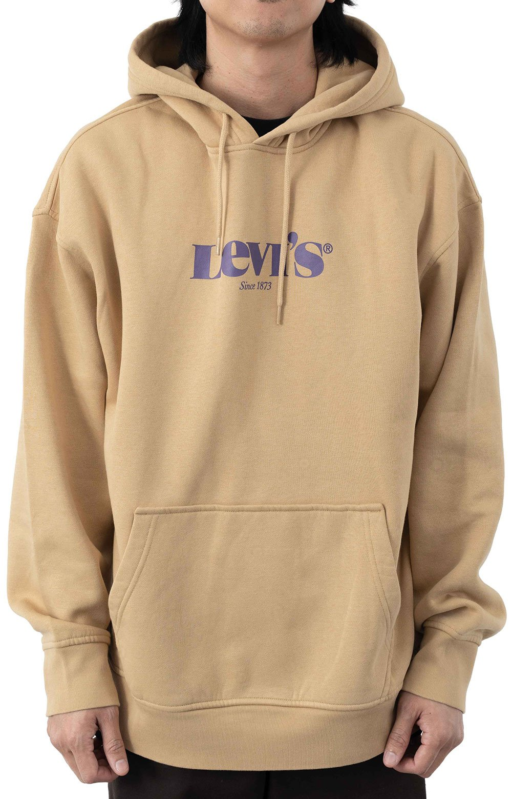(38821-0023) T3 Relaxed Graphic Pullover Hoodie - Curds & Whey