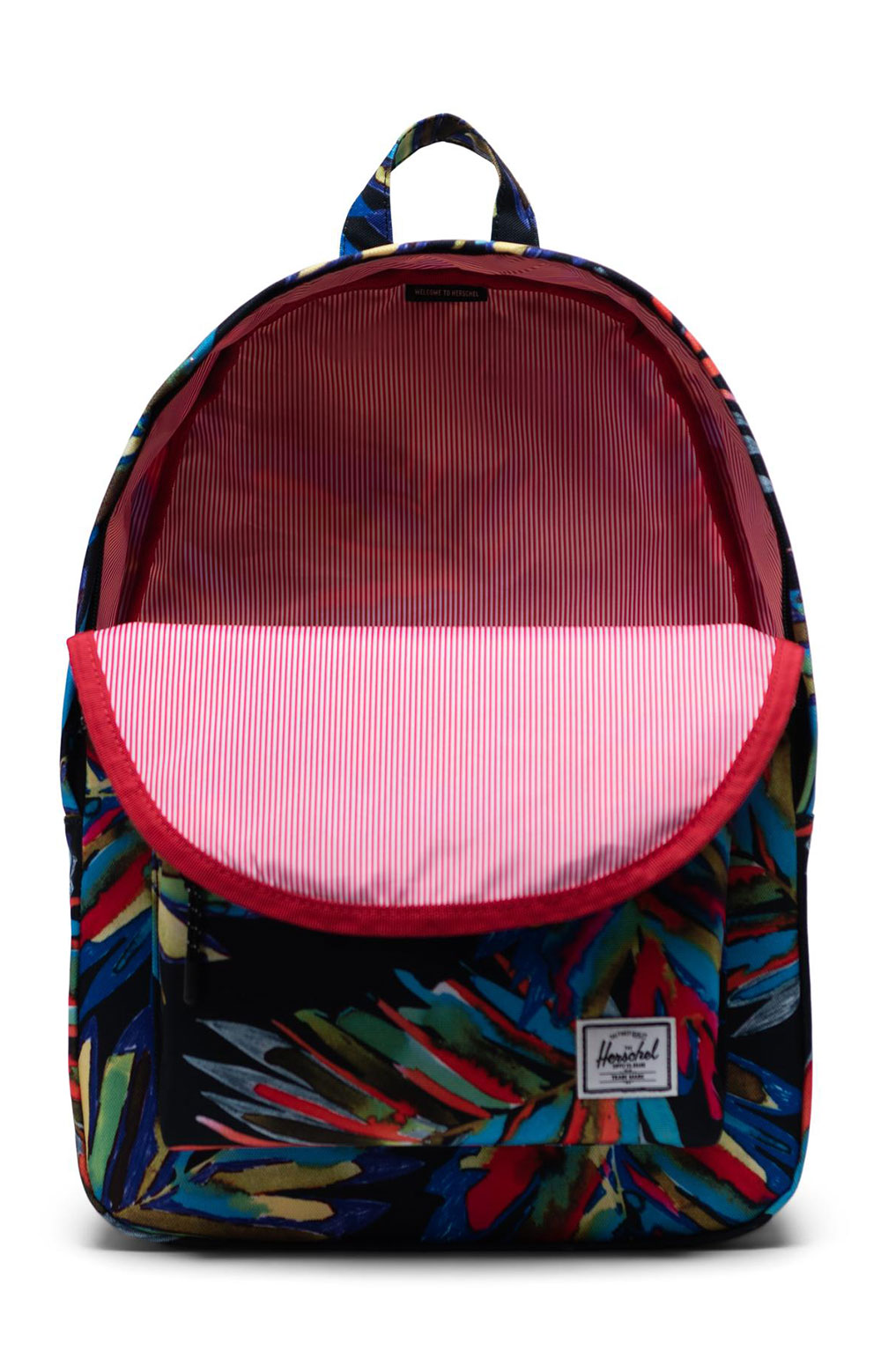 Classic Backpack - Painted Palm 2