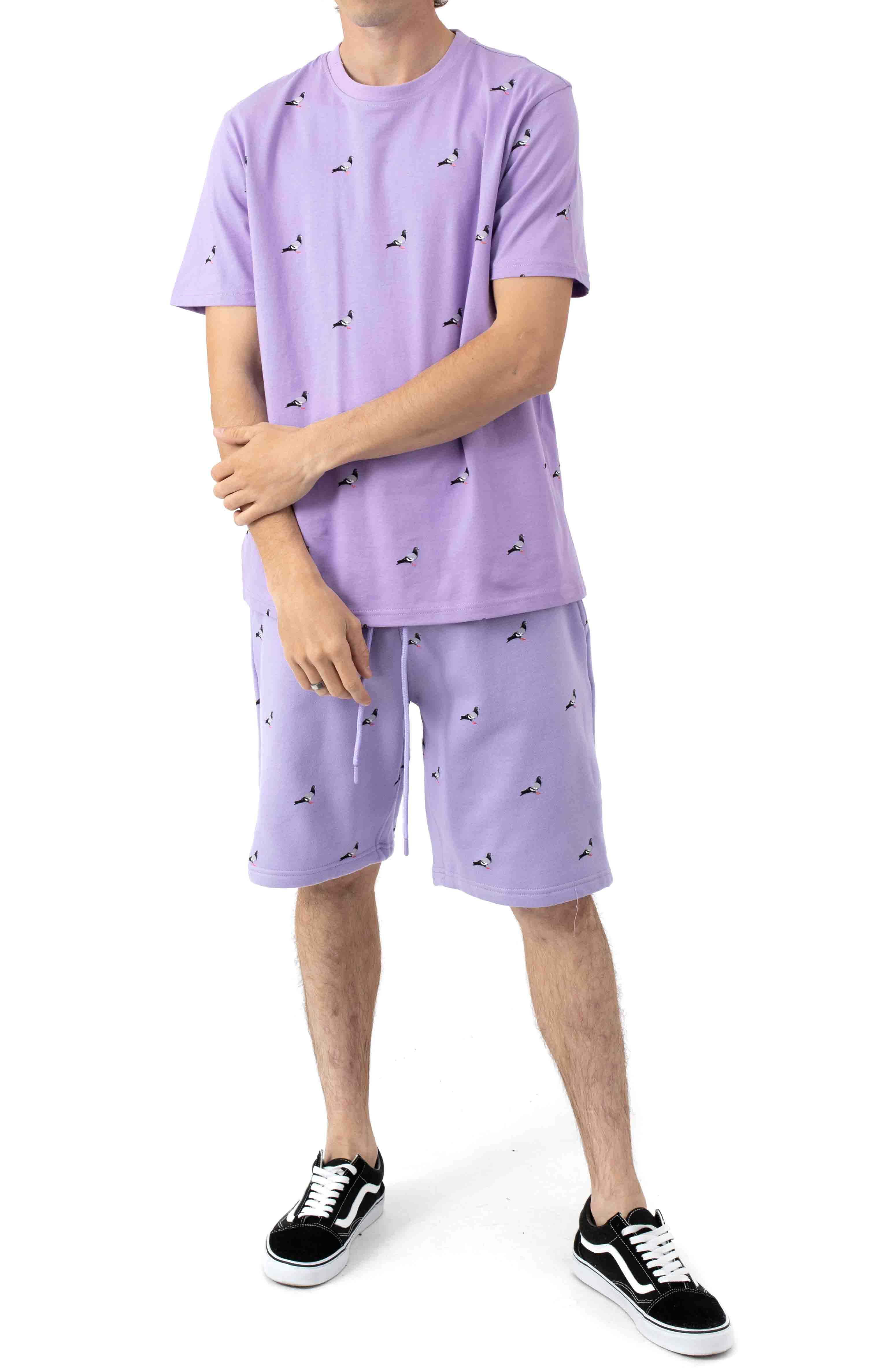 All Over Pigeon Sweatshorts - Lilac 4