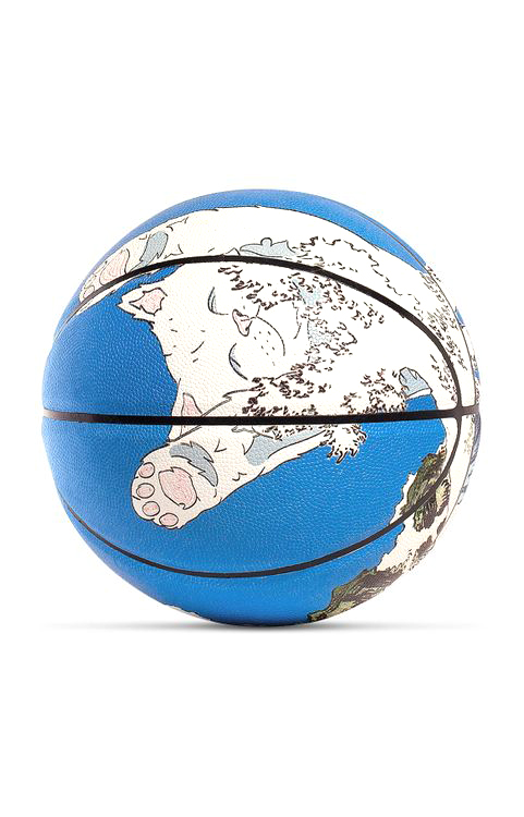 Great Wave Basketball