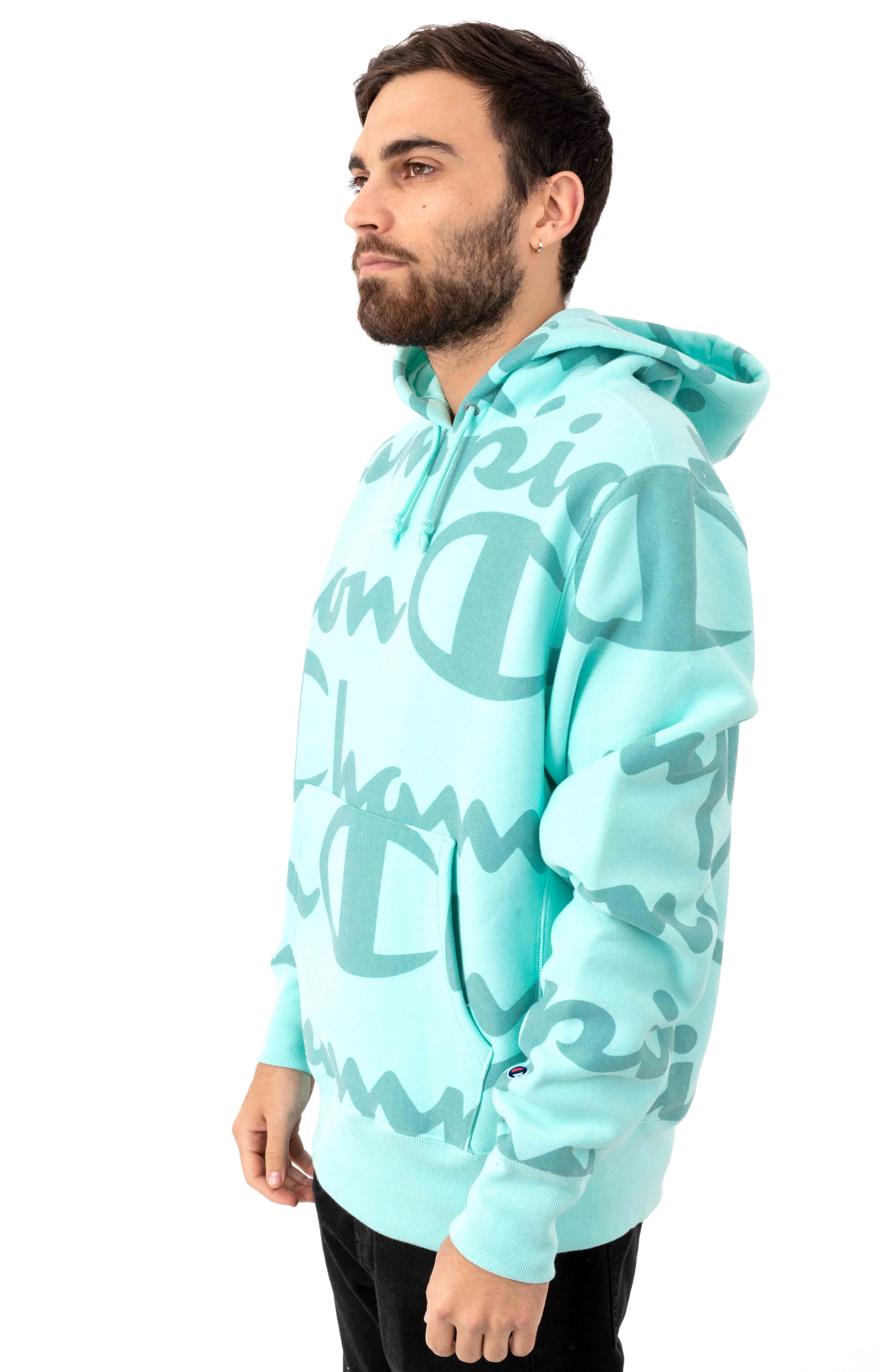 RW Giant AO Script Pullover Hoodie - Waterfall Green 2