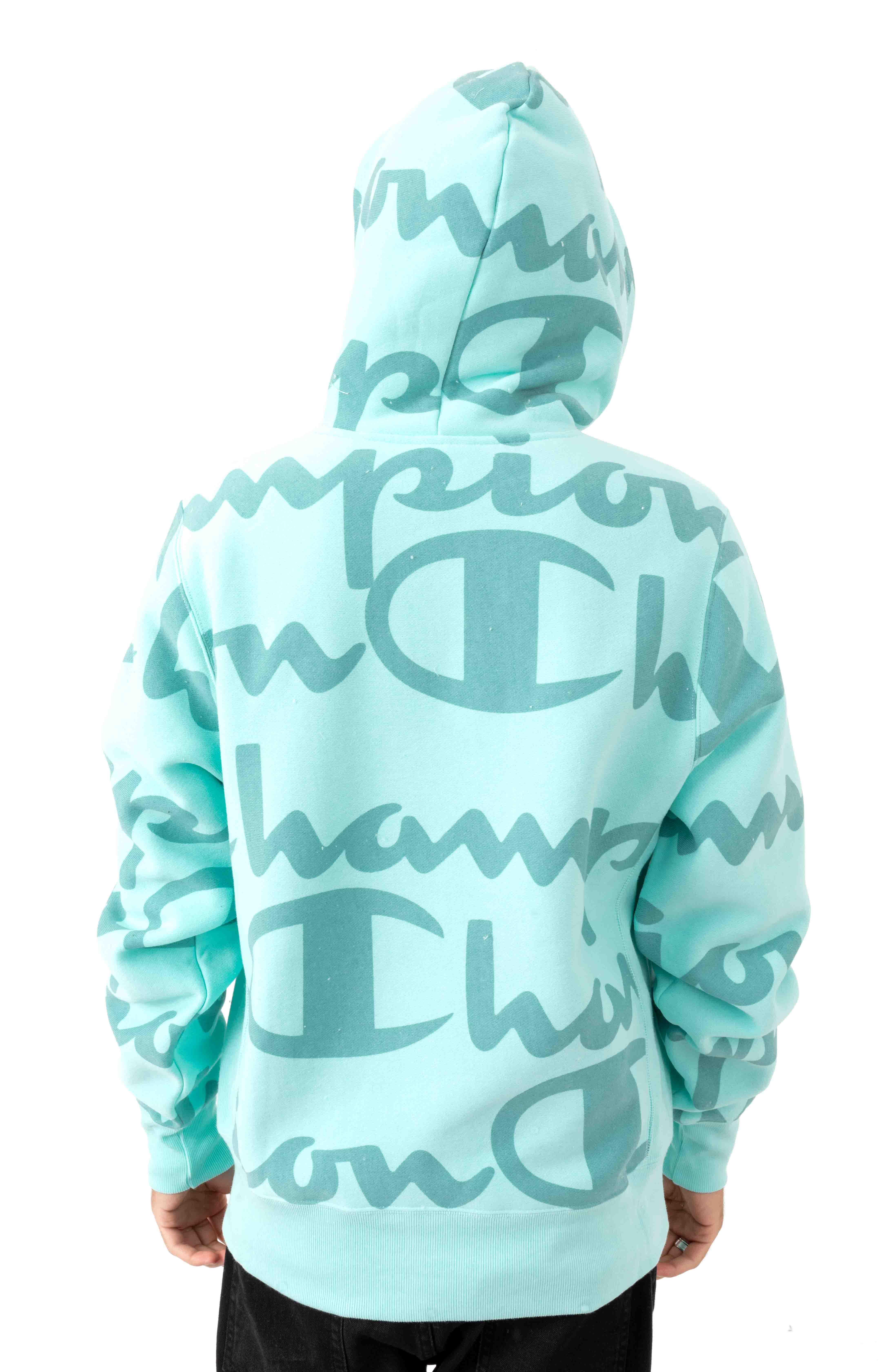 RW Giant AO Script Pullover Hoodie - Waterfall Green 3