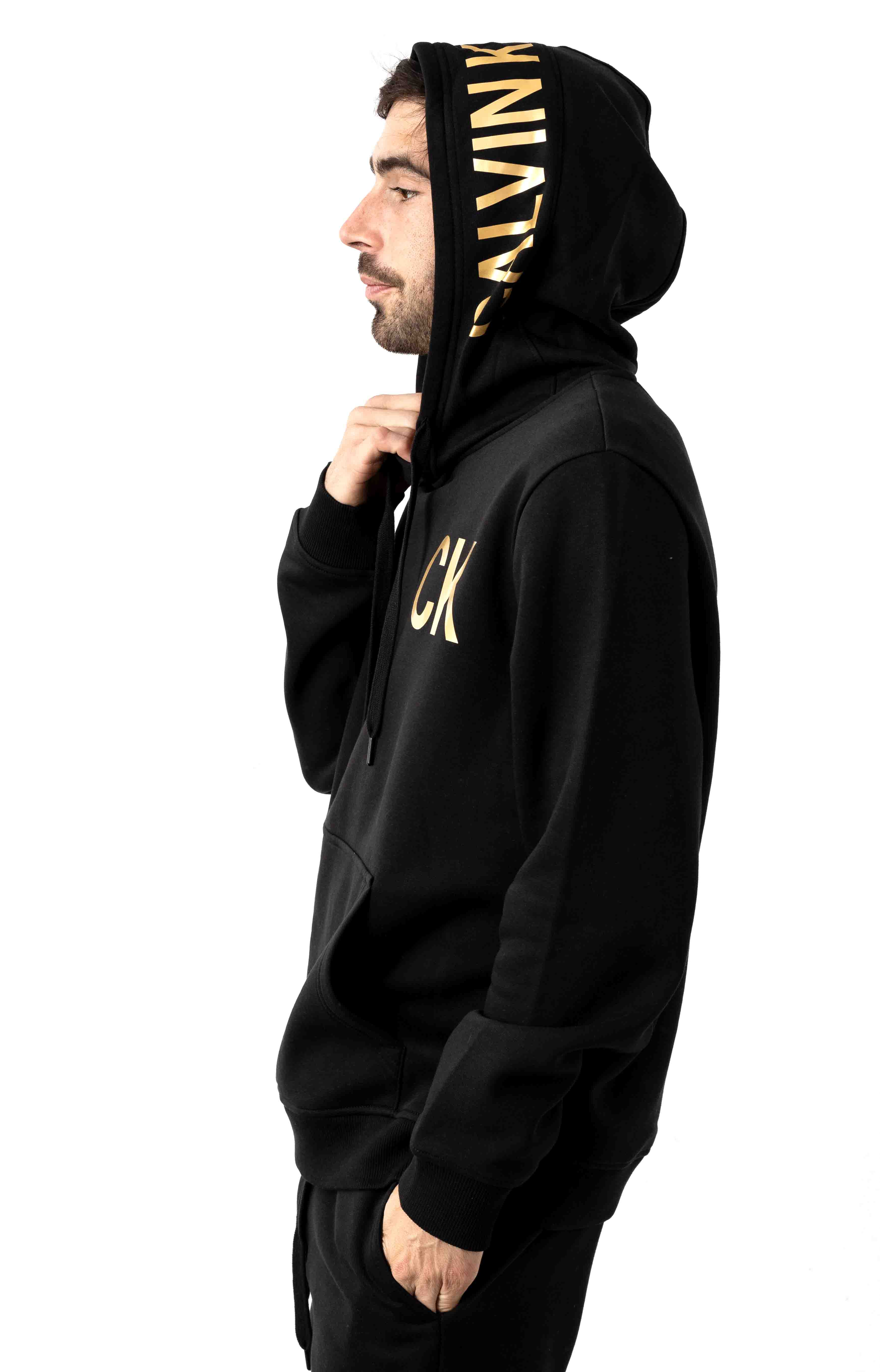 Regular Fit Iconic Logo Graphic Pullover Hoodie - Black 2
