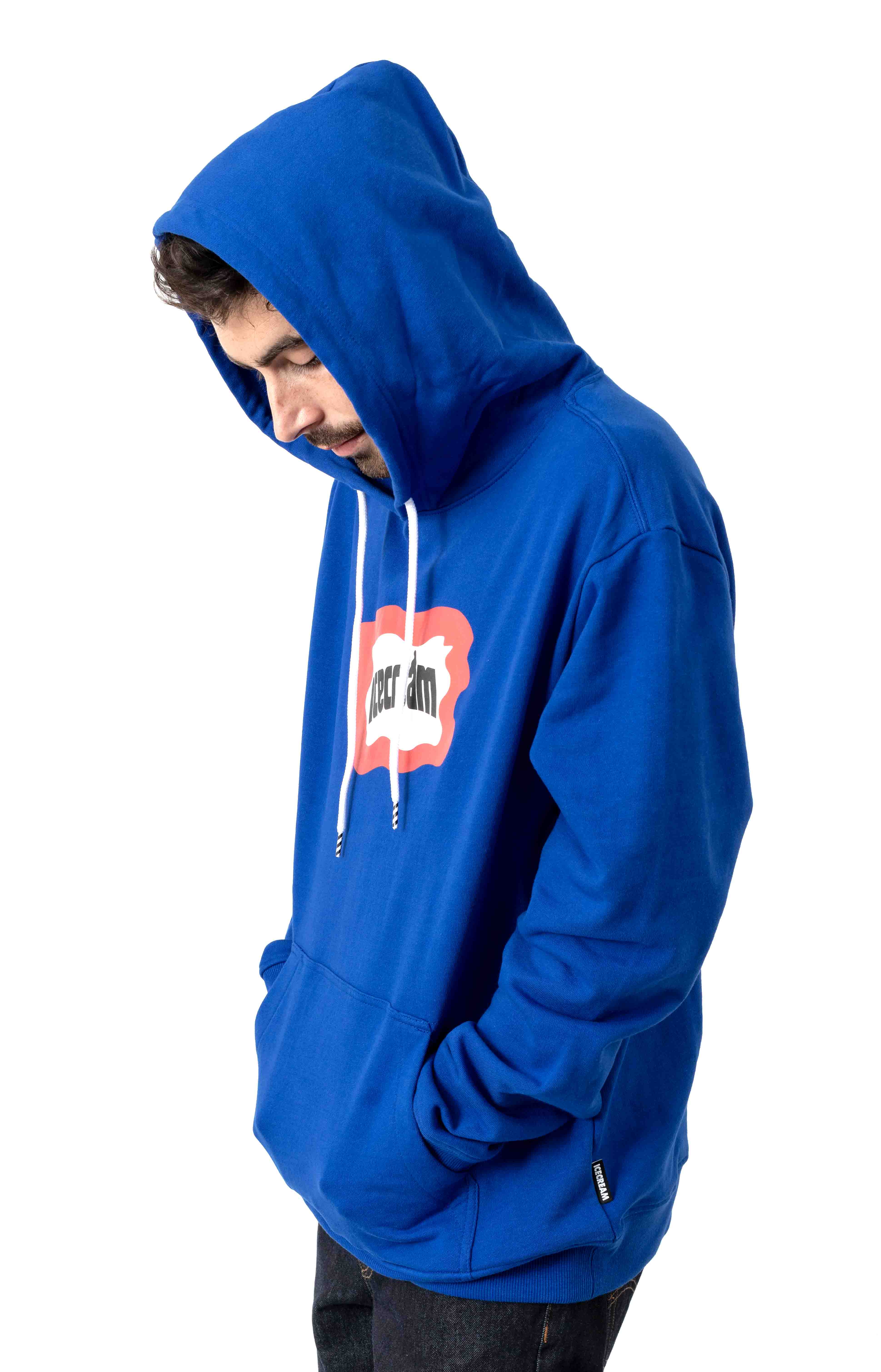 Flag Pullover Hoodie - Surf The Web 2