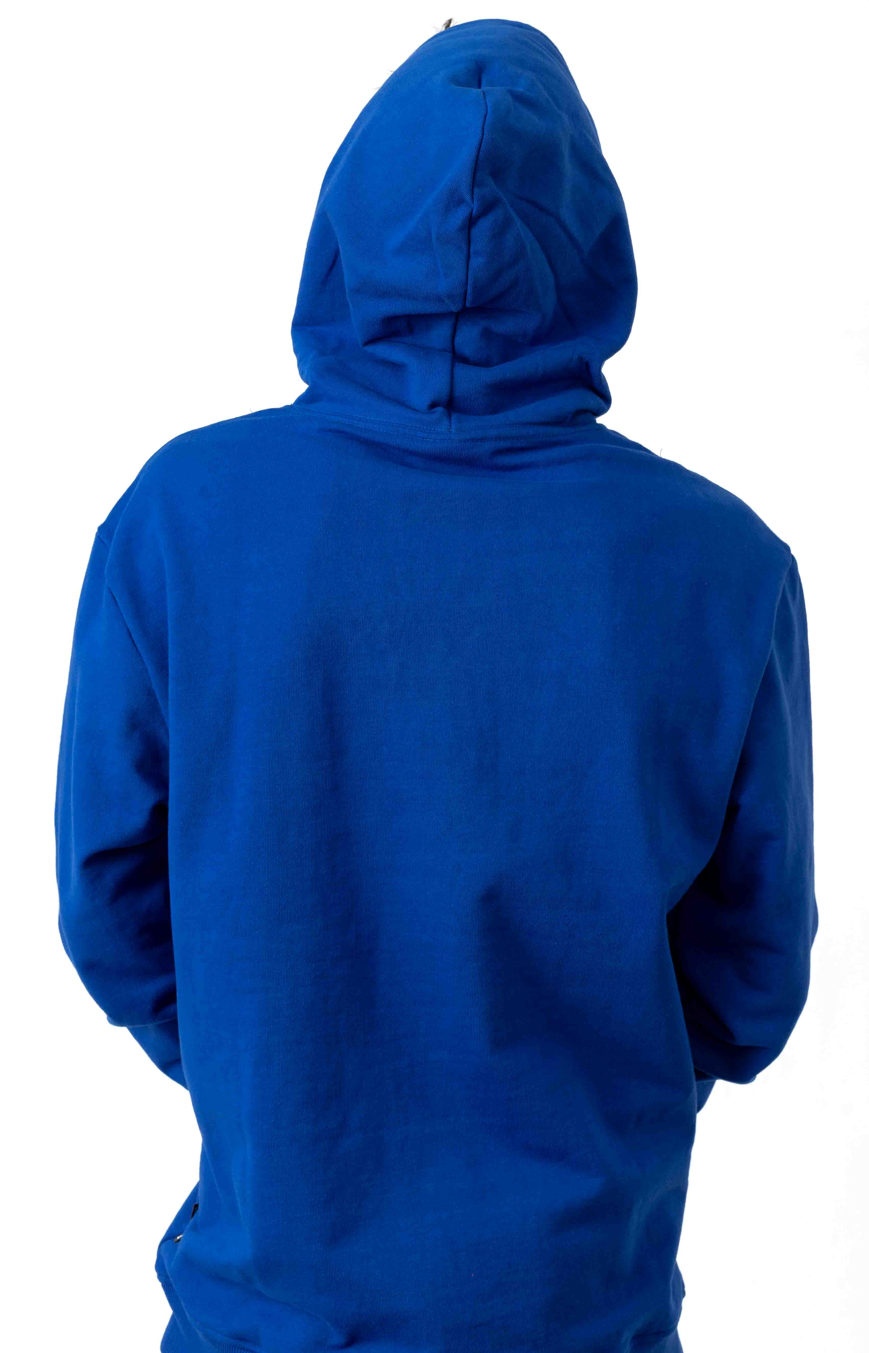Flag Pullover Hoodie - Surf The Web 3