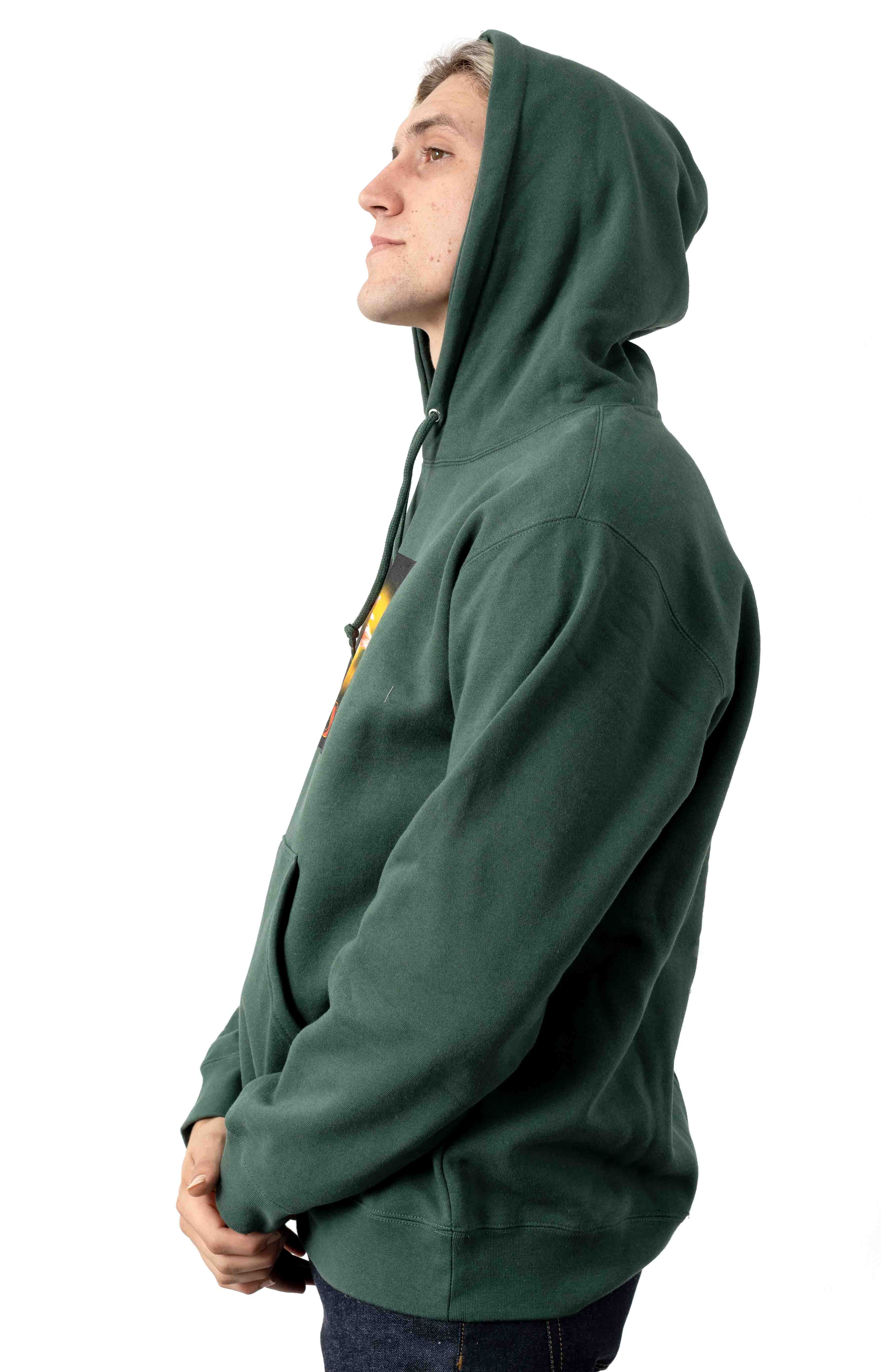 When The Sun Hits Pullover Hoodie - Alpine 2