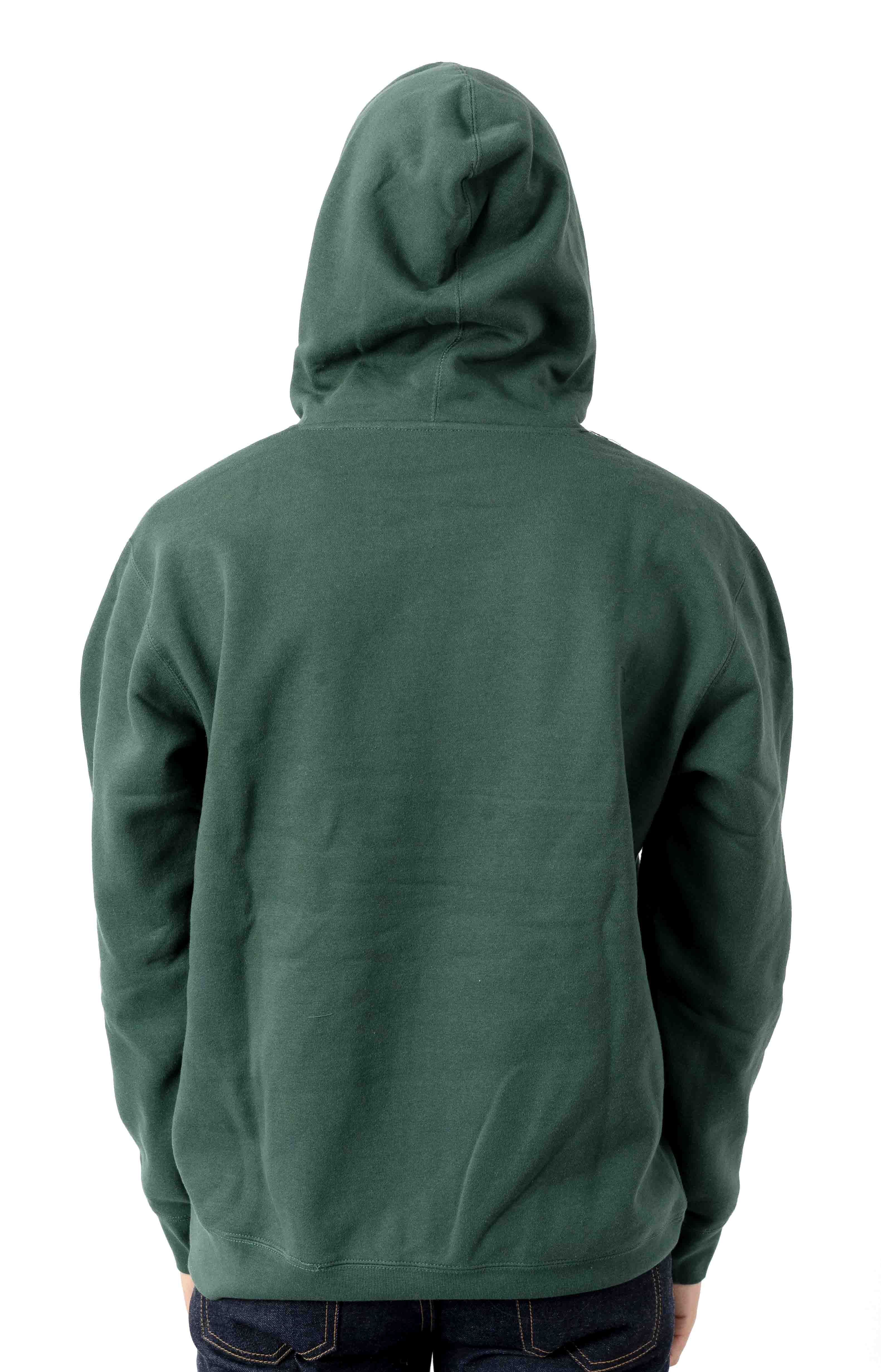 When The Sun Hits Pullover Hoodie - Alpine 3