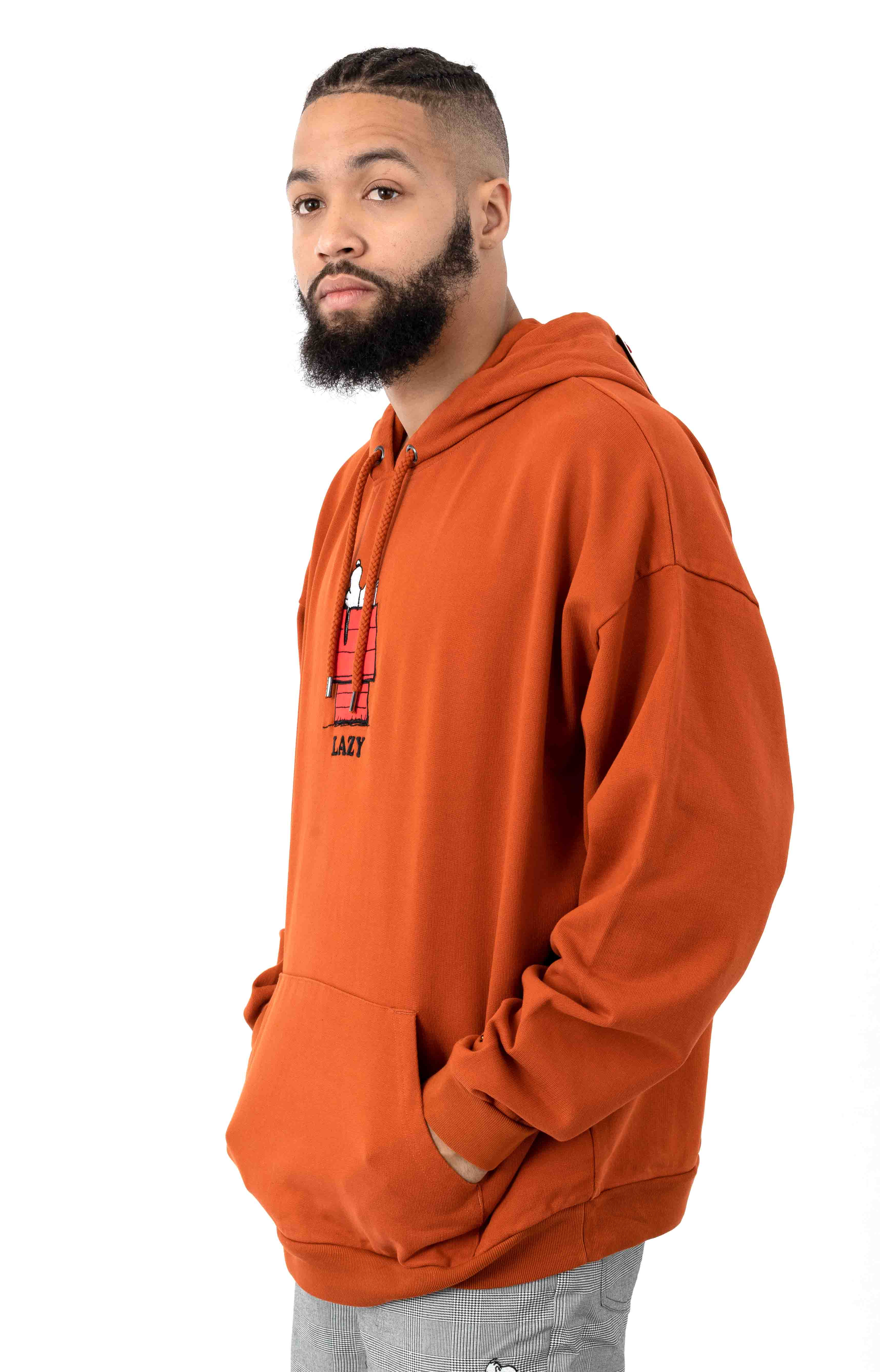 Doghouse Pullover Hoodie  2