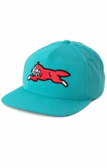 Ladd Snap-Back Hat - Teal