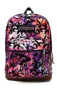 JanSport Clothing, Right Pack Expressions Backpack - Multi Rainbow